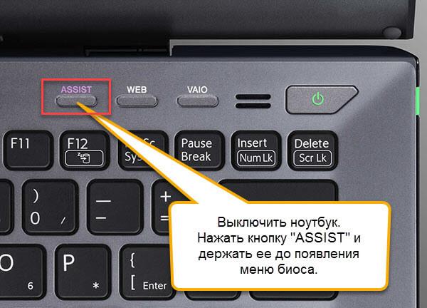 protsess-zahoda-v-bios-sony-cherez-knopku-assist.jpg